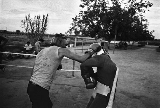 Boxers_05